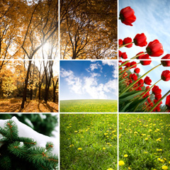 Celebrate your favorite season with a grid-style collage canvas print